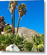 Palm Oasis On Borrego Palm Canyon Trail In Anza-borrego Desert Sp-ca Metal Print