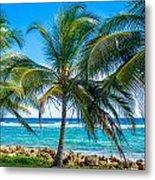 Palm Trees And Sea Metal Print