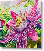 Passionflower Party Metal Print