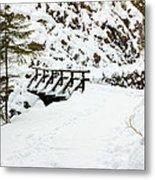 Pathway Through The Snow Metal Print
