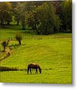 Peace In The Valley Metal Print