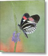 Piano Key Butterfly1 Metal Print