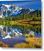 Picture Lake Metal Print by Inge Johnsson