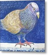 Pigeon On Snowy Wall Metal Print