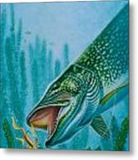 Pike And Jig Metal Print