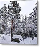 Pine Forest Winter Metal Print