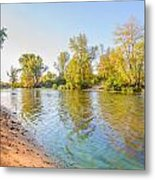 Plants And Trees Close To The River Metal Print