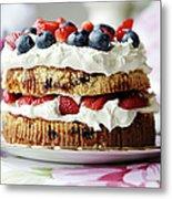 Plate Of Fruit And Cream Cake Metal Print
