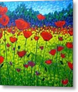 Poppy Field Metal Print