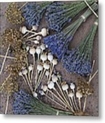 Poppy Seed Pods And Dried Lavender Metal Print by Tim Gainey