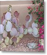 Prickly Pear Metal Print
