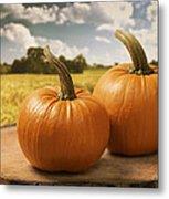 Pumpkins Metal Print by Amanda Elwell