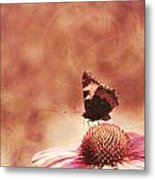 Purple Echinacea Flower Metal Print
