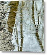 Raindrops On Reflections II Metal Print