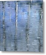 Raindrops On Reflections Metal Print