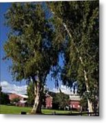 Red Barn Stanford University Metal Print