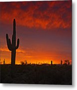 Red Desert Skies  Metal Print