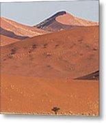 Red Dunes, Sossusvlei, Namib Desert Metal Print