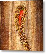 Red Hot Chilli Concept Metal Print