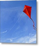 Red Kite In The Sky Metal Print