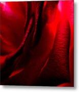 Red Petal Macro 3 Metal Print