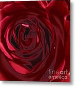 Red Rose Abstract 2 Metal Print