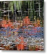 Reflecting Fall Metal Print