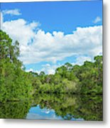 Reflection Of Trees And Clouds In South Metal Print