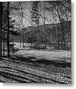 Relaxing By The Lake Metal Print