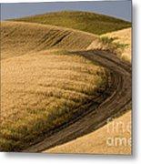 Road Through Wheat Field Metal Print