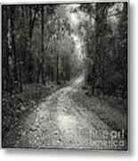 Road Way In Deep Forest Metal Print