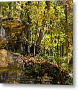 Rock Shelf And Forest Metal Print