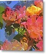 Rose 208 Metal Print
