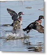 Running On The Water Metal Print