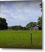 Rural Florida Metal Print