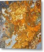 Rust Never Sleeps Metal Print