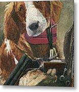 Rusty - A Hunting Dog Metal Print