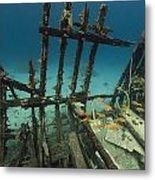 Safari Boat Wreckage And Aquatic Life In The Red Sea. Metal Print