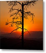 Serenity Metal Print by Davorin Mance