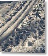 Ski Track In Sunlight Metal Print