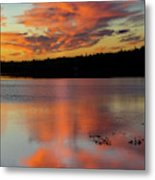 Skilak Lake, Alaska, The Aleutian Metal Print
