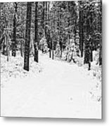 Small Road In A Snowy Forest Metal Print