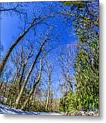 Snow Covered Road Leads Through The Wooded Forest Metal Print