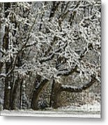 Snow On Trees Metal Print