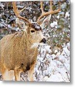 Snowstorm Deer Metal Print