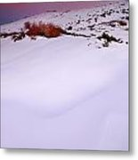 Soft Snow At Sunset Metal Print