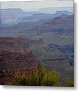 South Rim View Metal Print by Carrie Putz
