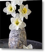 Spring Daffodils Metal Print by Edward Fielding