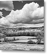 Spring Farm Landscape With Dandelions In Maine Metal Print