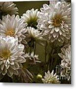 Spring Flowers Metal Print by Joe McCormack Jr